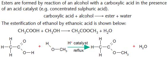 an experiment to understand how esters form from an alcohol and a carboxylic acid